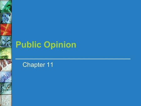 Public Opinion Chapter 11. In this chapter we will learn about The role of public opinion in a democracy How public opinion can be measured Where our.