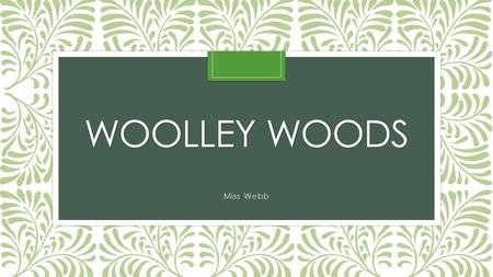 WOOLLEY WOODS Miss Webb. Expectations Children come to school every day. Exceptional behaviour and manners. All children try their best whatever the task.