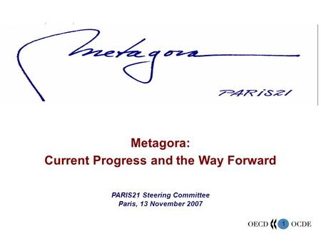 1 Metagora: Current Progress and the Way Forward PARIS21 Steering Committee Paris, 13 November 2007.