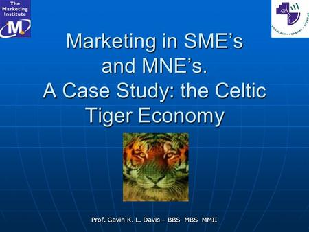 Marketing in SME's and MNE's. A Case Study: the Celtic Tiger Economy Prof. Gavin K. L. Davis – BBS MBS MMII.