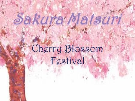 Cherry Blossom Festival. What is Sakura Matsuri? The Cherry Blossom Festival is a spring festival which celebrates the natural beauty of cherry trees,