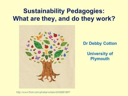 Sustainability Pedagogies: What are they, and do they work? Dr Debby Cotton University of Plymouth