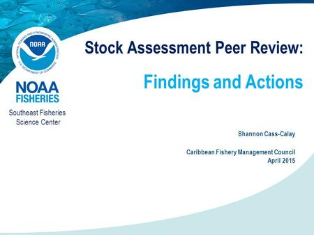Stock Assessment Peer Review: Findings and Actions Shannon Cass-Calay Caribbean Fishery Management Council April 2015 Southeast Fisheries Science Center.