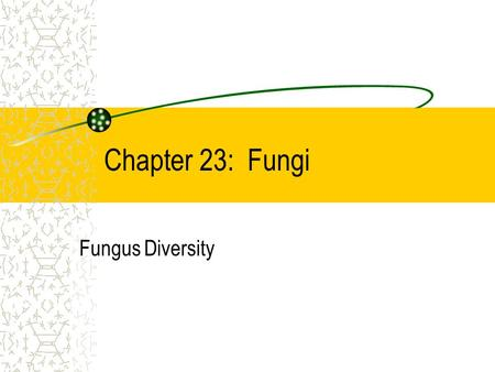 Chapter 23: Fungi Fungus Diversity Identify what fungi are. Describe habitats of fungi. Outline the structure of fungi. Describe fungi reproduction.