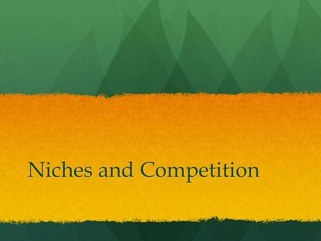 Niches and Competition
