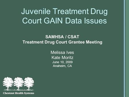 Juvenile Treatment Drug Court GAIN Data Issues SAMHSA / CSAT Treatment Drug Court Grantee Meeting Melissa Ives Kate Moritz June 10, 2009 Anaheim, CA.