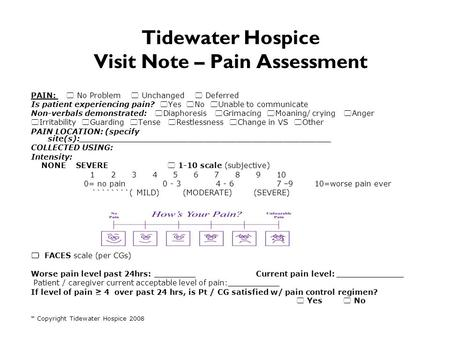 Tidewater Hospice Visit Note – Pain Assessment PAIN:  No Problem  Unchanged  Deferred Is patient experiencing pain?  Yes  No  Unable to communicate.