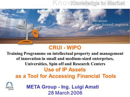 CRUI - WIPO Training Programme on intellectual property and management of innovation in small and medium-sized enterprises, Universities, Spin off and.