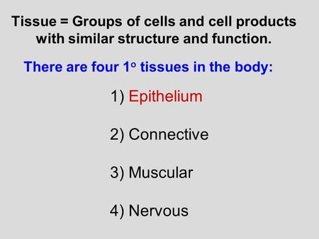 Tissue = Groups of cells and cell products with similar structure and function. There are four 1 o tissues in the body: 1) Epithelium 2) Connective 3)