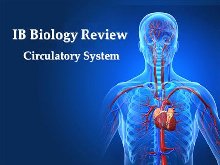 IB Biology Review Circulatory System. Why do we need blood circulation? Move blood around the body to Bring oxygen to cells Take away carbon dioxide Take.