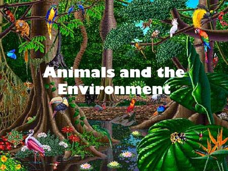 Animals and the Environment. 'The fate of the sons of men and beasts is the same, they have the same breath and one has no advantage over another' The.