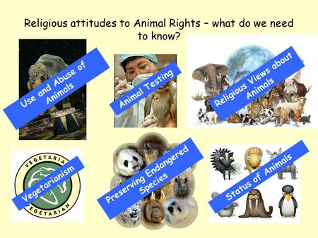 Religious attitudes to Animal Rights – what do we need to know? Use and Abuse of Animals Animal Testing Religious Views about Animals Vegetarianism Preserving.