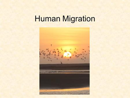 laws of migration by e g Immigration legislative and administrative policies, legal statutes and court   offered here examines the many permutations of immigration policy and law,  often.