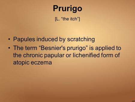 "Prurigo [L. ""the itch""] Papules induced by scratching"