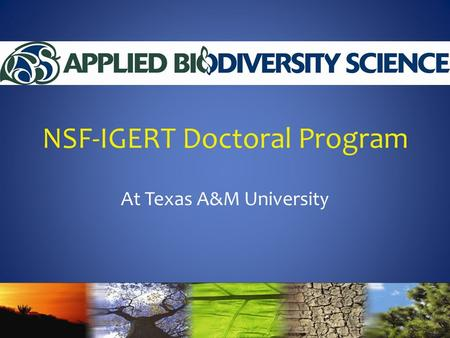NSF-IGERT Doctoral Program At Texas A&M University.