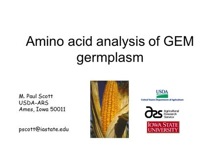 Amino acid analysis of GEM germplasm M. Paul Scott USDA-ARS Ames, Iowa 50011