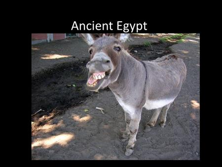 Ancient Egypt 3000 BCE to 332 BCE Ancient Egypt app. 10,000 sq. miles the same as Sumer and Akkad radically different in shape a ribbon of fertile land.
