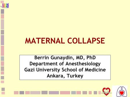 1 MATERNAL COLLAPSE Berrin Gunaydin, MD, PhD Department of Anesthesiology Gazi University School of Medicine Ankara, Turkey.