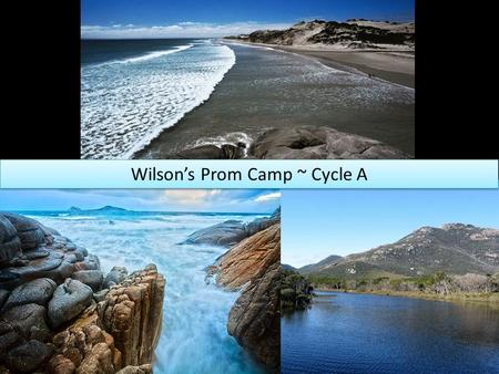 Wilson's Prom Camp ~ Cycle A. Learning Goals To learn how to respond to challenges To learn how to be responsible for themselves and their experiences.