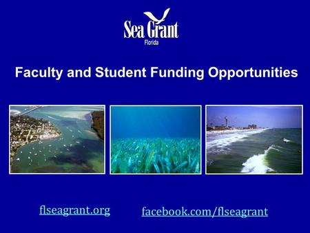 Faculty and Student Funding Opportunities flseagrant.org facebook.com/flseagrant.