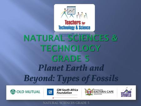 Planet Earth and Beyond: Types of Fossils NATURAL SCIENCES GRADE 5.