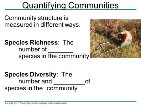 Copyright © 2005 Pearson Education, Inc. publishing as Benjamin Cummings Quantifying Communities Community structure is measured in different ways. Species.