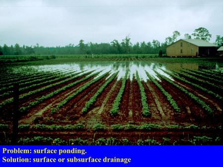 Problem: surface ponding. Solution: surface or subsurface drainage.