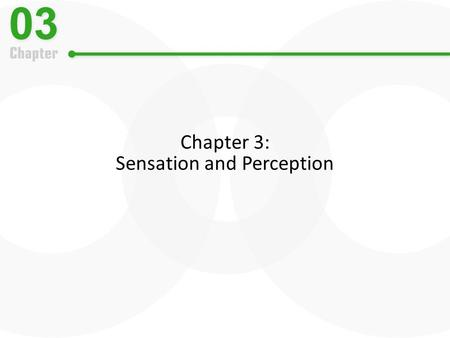Chapter 3: Sensation and Perception