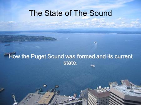 The State of The Sound How the Puget Sound was formed and its current state.