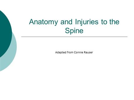 Anatomy and Injuries to the Spine Adapted from Connie Rauser.