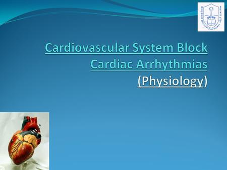 Lecture Objectives Describe sinus arrhythmias Describe the main pathophysiological causes of cardiac arrhythmias Explain the mechanism of cardiac block.