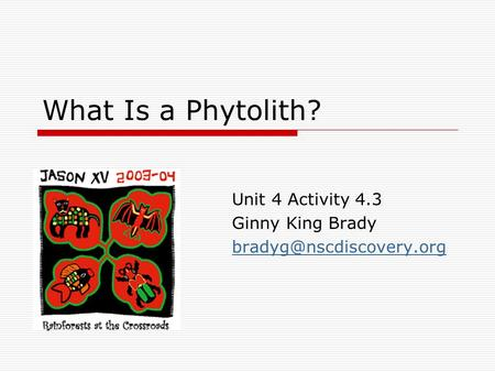 What Is a Phytolith? Unit 4 Activity 4.3 Ginny King Brady