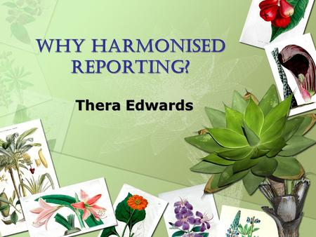 Why harmonised reporting? Thera Edwards. WHAT IS HARMONISATION? Harmonisation can be considered as any activity that leads to a more integrated process.