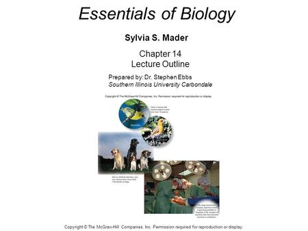 Essentials of Biology Sylvia S. Mader Chapter 14 Lecture Outline Prepared by: Dr. Stephen Ebbs Southern Illinois University Carbondale Copyright © The.