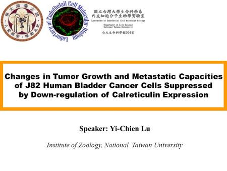 Changes in Tumor Growth and Metastatic Capacities of J82 Human Bladder Cancer Cells Suppressed by Down-regulation of Calreticulin Expression Speaker: Yi-Chien.