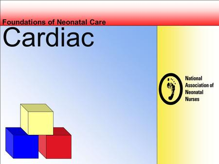 Cardiac Foundations of Neonatal Care. Objectives Describe the anatomic and physiologic transition from fetal to neonatal circulation. List the diagnostic.