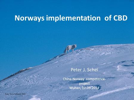 Foto Tore Solstad, SNO Norways implementation of CBD Peter J. Schei China-Norway competence- project Wuhan, 12.09.2012.