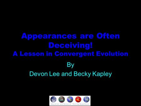 Appearances are Often Deceiving! A Lesson in Convergent Evolution By Devon Lee and Becky Kapley.