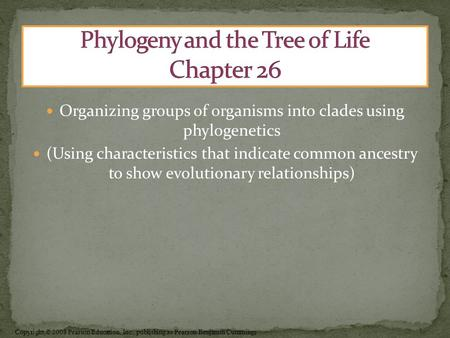 Copyright © 2008 Pearson Education, Inc., publishing as Pearson Benjamin Cummings Organizing groups of organisms into clades using phylogenetics (Using.