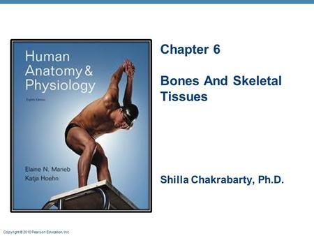 Copyright © 2010 Pearson Education, Inc. Chapter 6 Bones And Skeletal Tissues Shilla Chakrabarty, Ph.D.