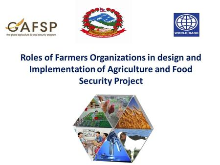 Roles of Farmers Organizations in design and Implementation of Agriculture and Food Security Project.