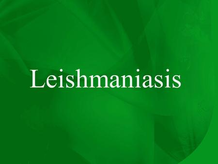 Leishmaniasis. Promastigotes of Leishmania Amastigote of Leishmania.