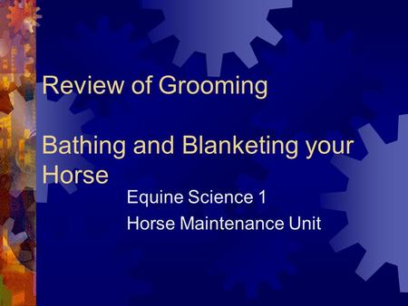 Review of Grooming Bathing and Blanketing your Horse Equine Science 1 Horse Maintenance Unit.