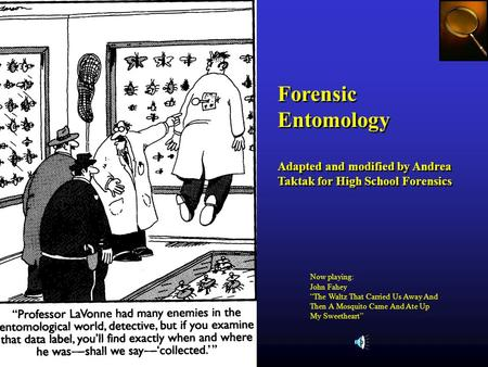 Forensic Entomology Adapted and modified by Andrea Taktak for High School Forensics Forensic Entomology Adapted and modified by Andrea Taktak for High.