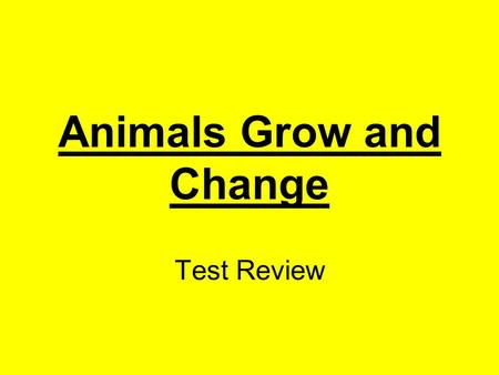 Animals Grow and Change Test Review. What do a dog and parrot need to survive? food, water, & air Click here for answer Next.