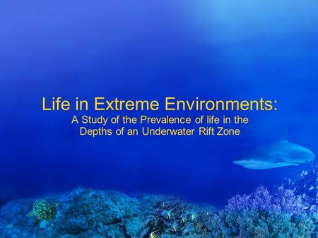 Life in Extreme Environments: A Study of the Prevalence of life in the Depths of an Underwater Rift Zone.