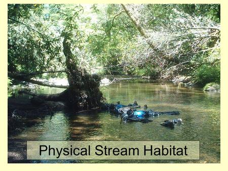 "Physical Stream Habitat. What is ""Habitat""? Broad Definition (EPA): ""The spatial structure of the environment which allows species to live, reproduce,"