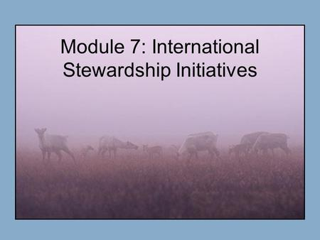 Module 7: International Stewardship Initiatives. Premises Most environmental issues in the Arctic are international in nature. Why?? Multidisciplinary.