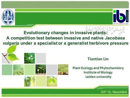 Evolutionary changes in invasive plants: A competition test between invasive and native Jacobaea vulgaris under a specialist or a generalist herbivore.