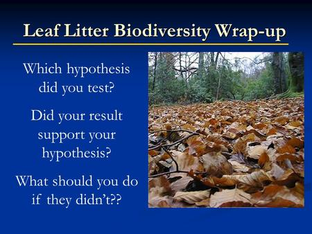 Leaf Litter Biodiversity Wrap-up Which hypothesis did you test? Did your result support your hypothesis? What should you do if they didn't??